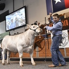 Junior Market Exhibitors Receive $2.2 Million in Additional Premiums from the Houston Livestock Show and Rodeo™