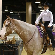 Texas Youth Showcase Trail Skills During Houston Livestock Show and Rodeo™ Paint Horse Show
