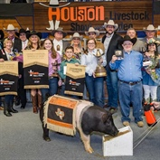 Junior Market Barrow Auction Buyers Break Records at 2018 Houston Livestock Show and Rodeo™