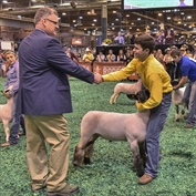Houston Livestock Show and Rodeo Awards Nearly $2.7 Million in Additional Premiums to more than 1,900 Junior Market Exhibitors