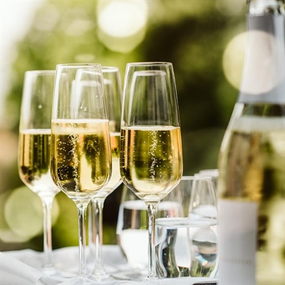 Bring on the bubbly: A guide to the best sparkling wines for any occasion