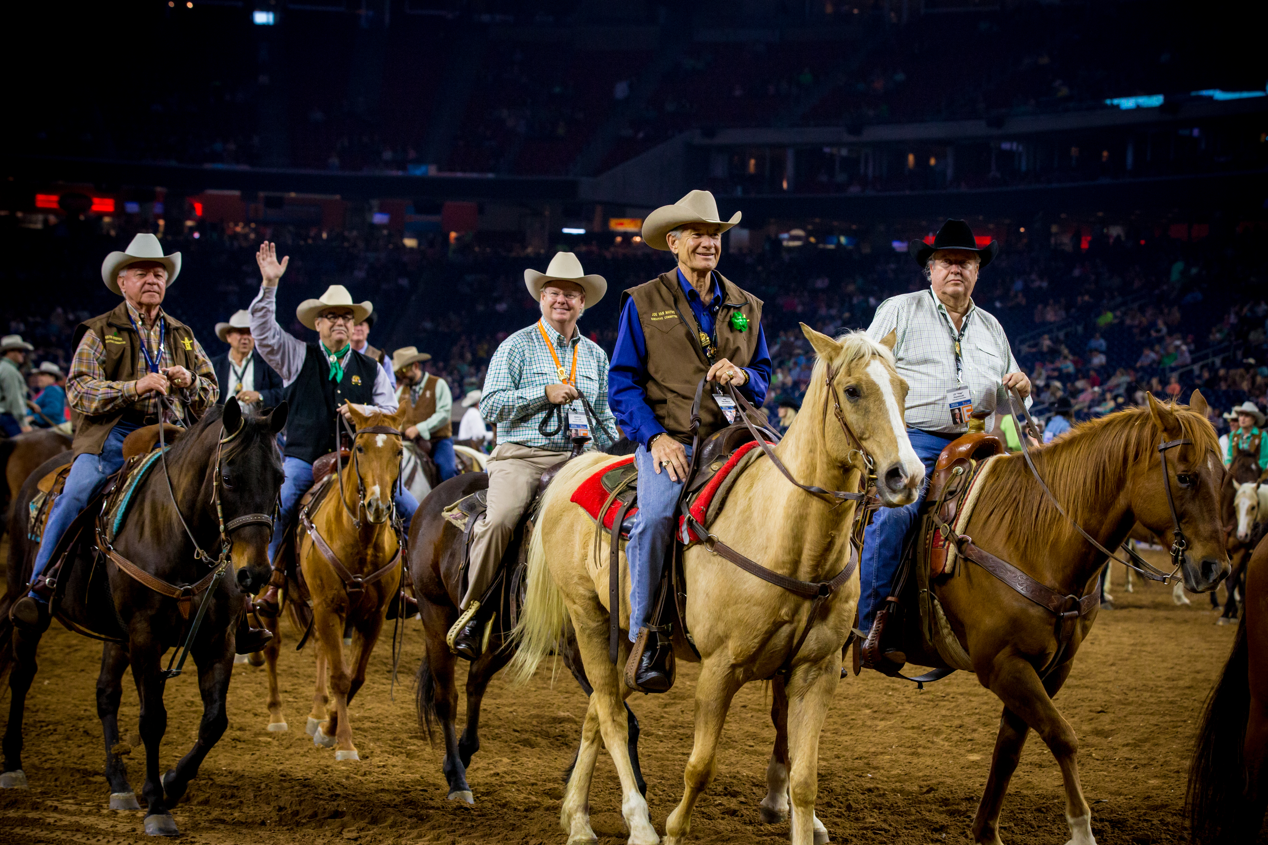 houston livestock show and rodeo horse sale