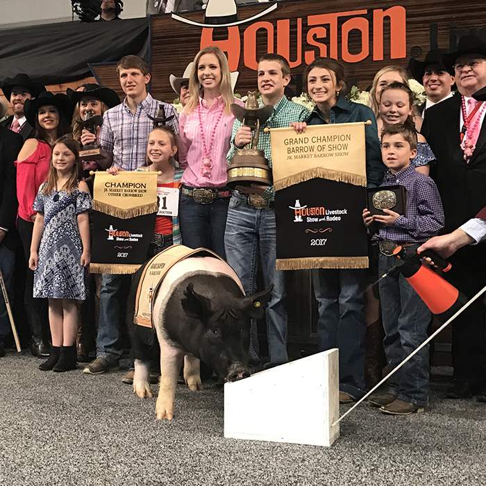 Generous Buyers Submit Record Breaking Bids At The 2017