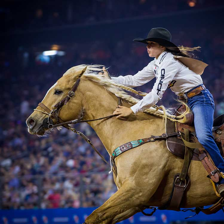 Rodeohouston 174 Super Series Ii Champions Saddle Up For