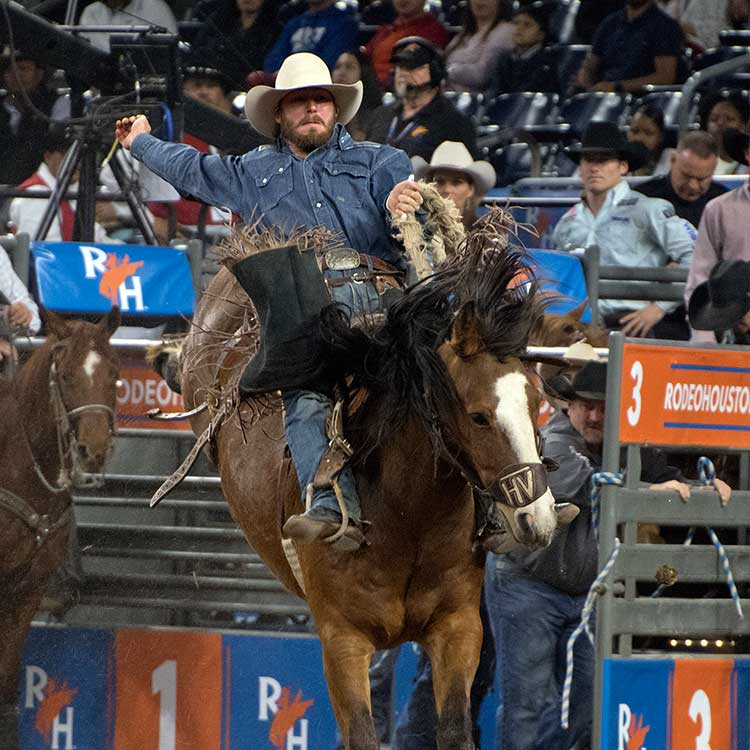Riders Advance Among Fierce Competition In Rodeohouston
