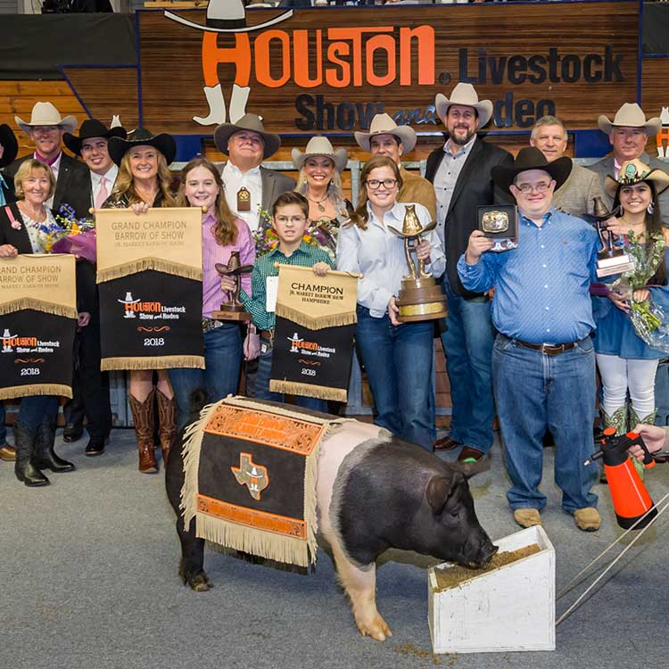 Junior Market Barrow Auction Buyers Break Records At 2018
