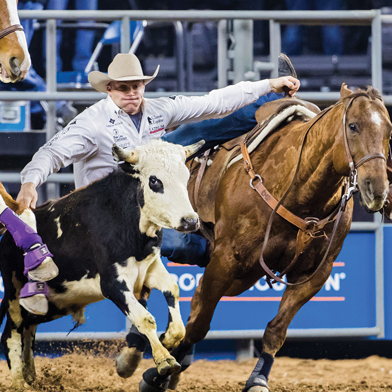 2019 Super Series I Champions Houston Livestock Show And