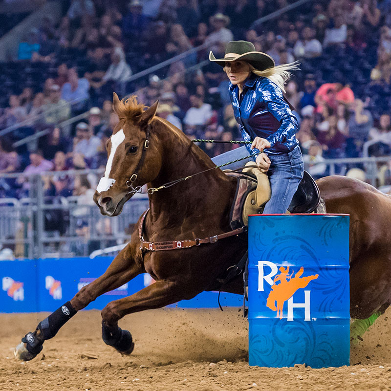 Super Series Ii Champions Houston Livestock Show And Rodeo