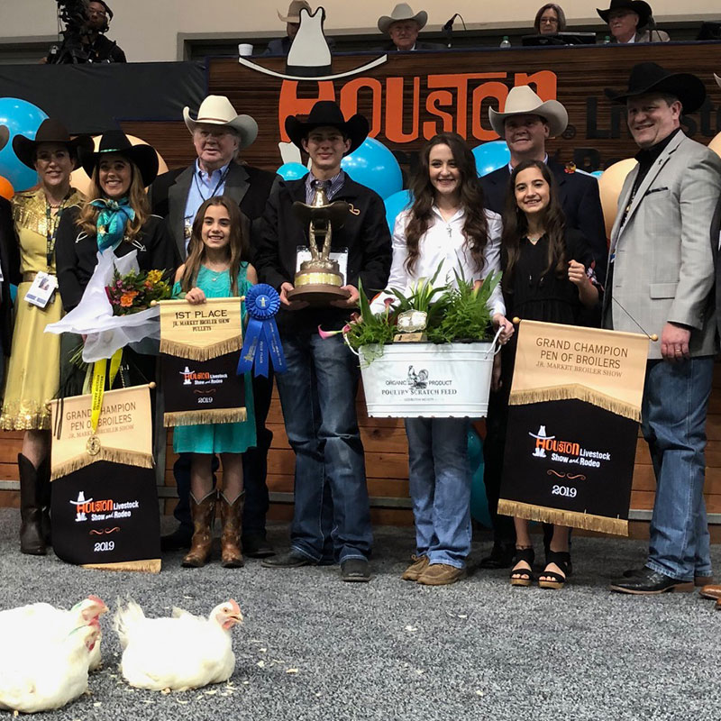 Poultry Auction Houston Livestock Show And Rodeo