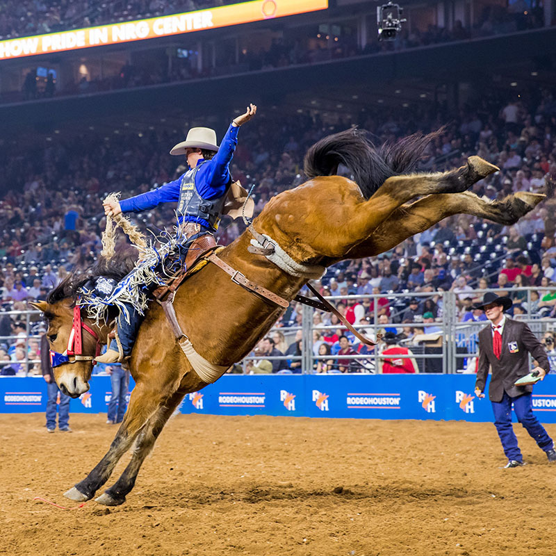 Semifinal 1 Champions Houston Livestock Show And Rodeo