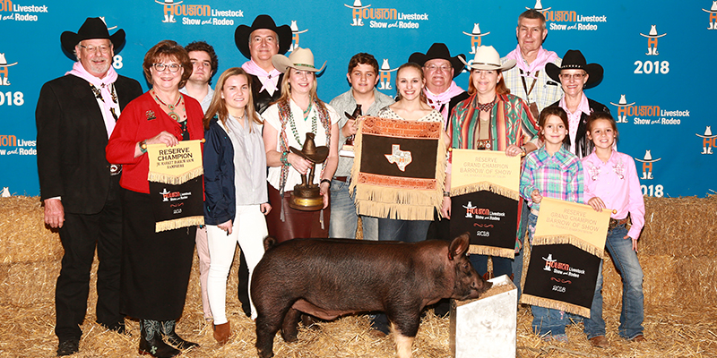 Res Grand Champion Barrow