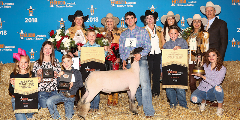 Res Grand Champion Lamb